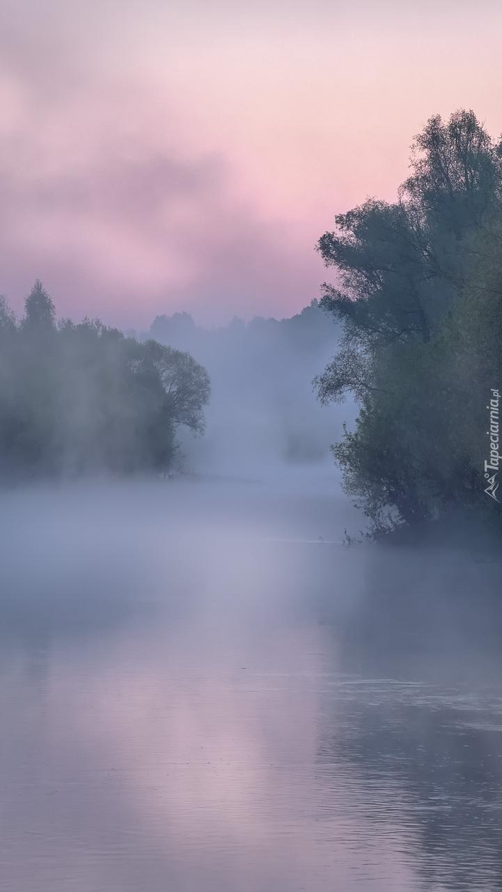 Rzeka Osyotr w porannej mgle
