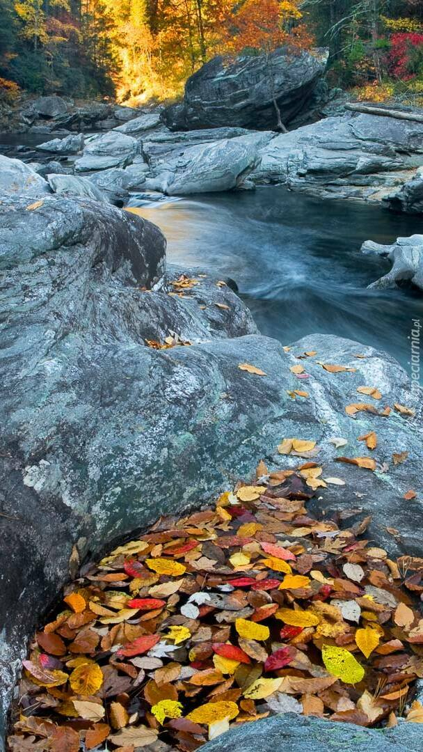 Rzeka pomiędzy skałami