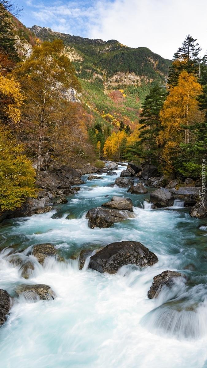 Rzeka Rio Ara w Hiszpanii