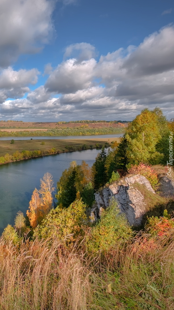 Rzeka Sylva
