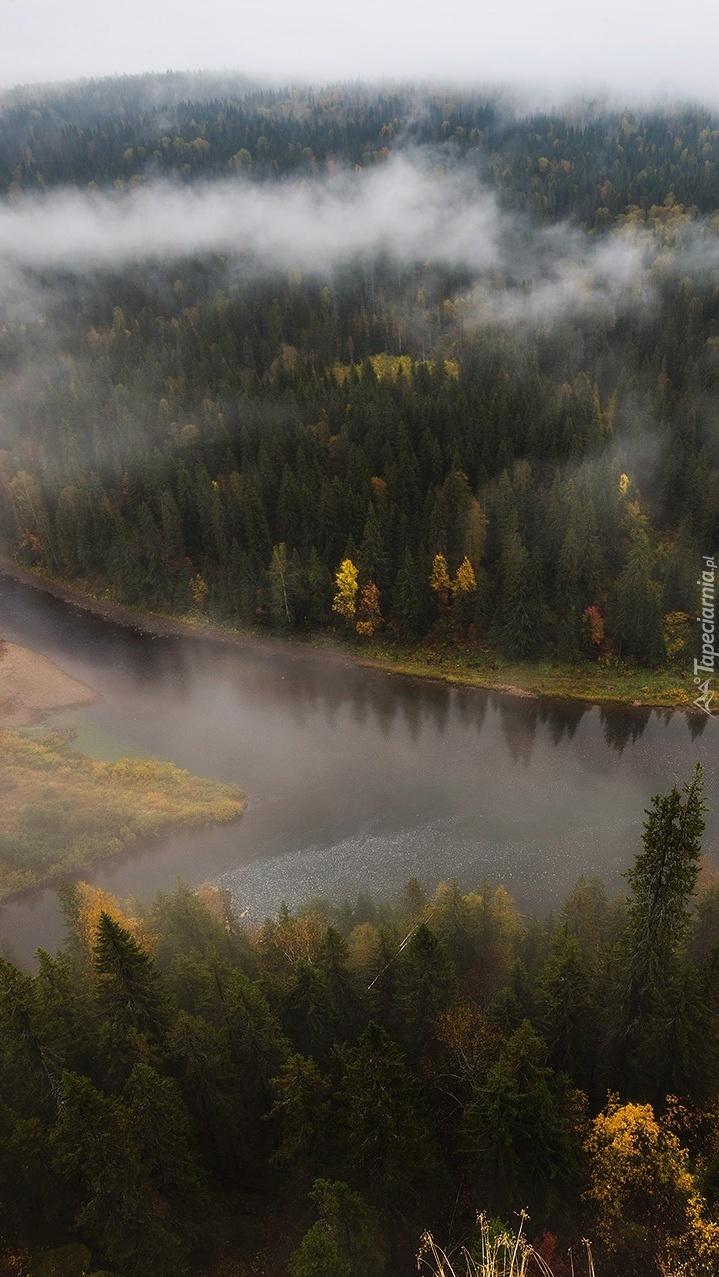 Rzeka Usva i lasy we mgle