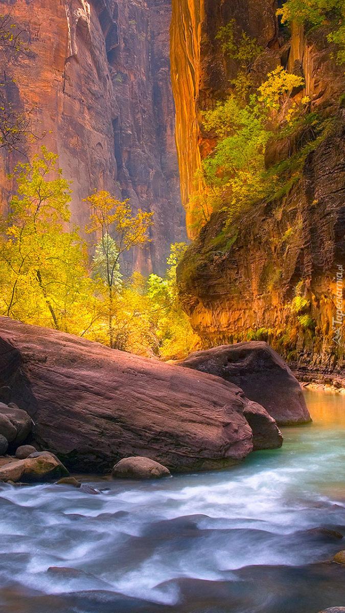 Rzeka Virgin River i kanion Zion Narrows