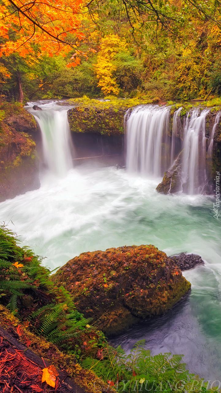 Rzeka White Salmon River z wodospadem Spirit Falls