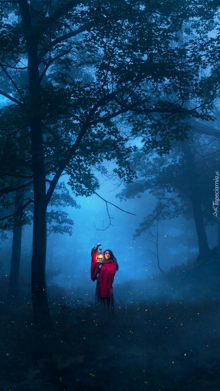Samotna kobieta w zamglonym lesie