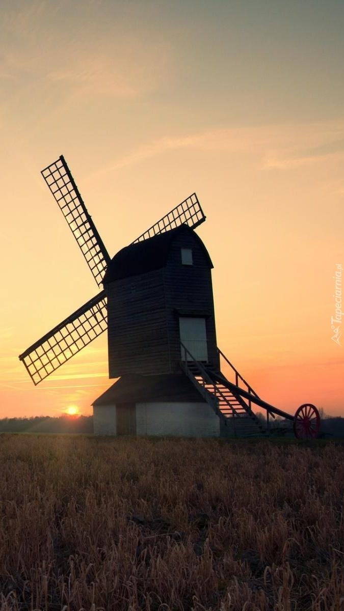 Samotny wiatrak w zachodzącym słońcu