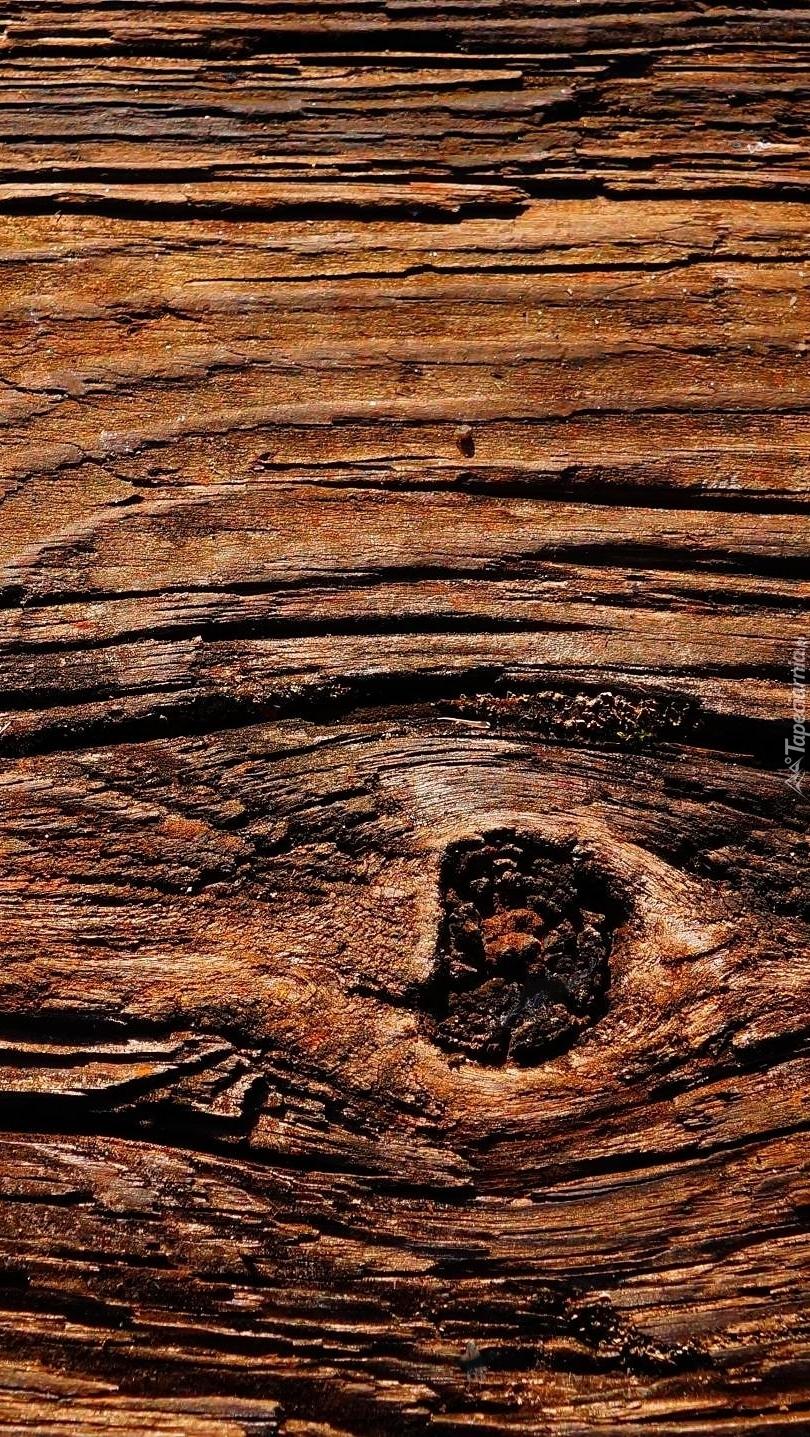 Sęk w drewnie