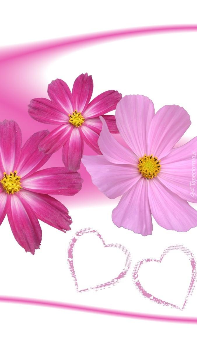 Serca obok kwiatów