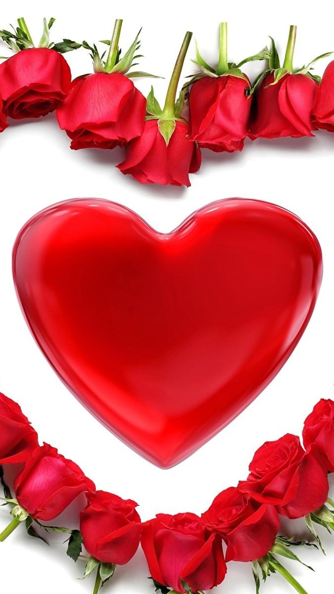 Serce i róże