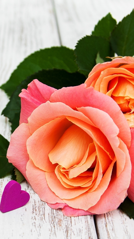 Serduszko obok róży na desce