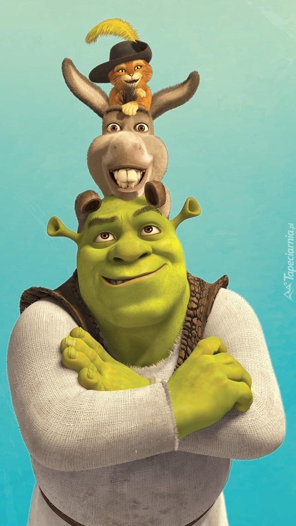 Shrek z osłem i kotem