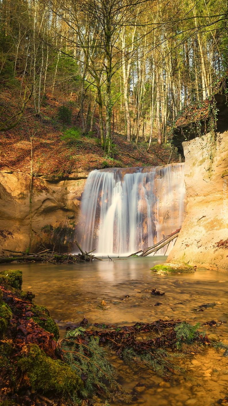 Skalny wodospad w lesie