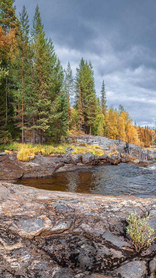 Skały i drzewa nad rzeką