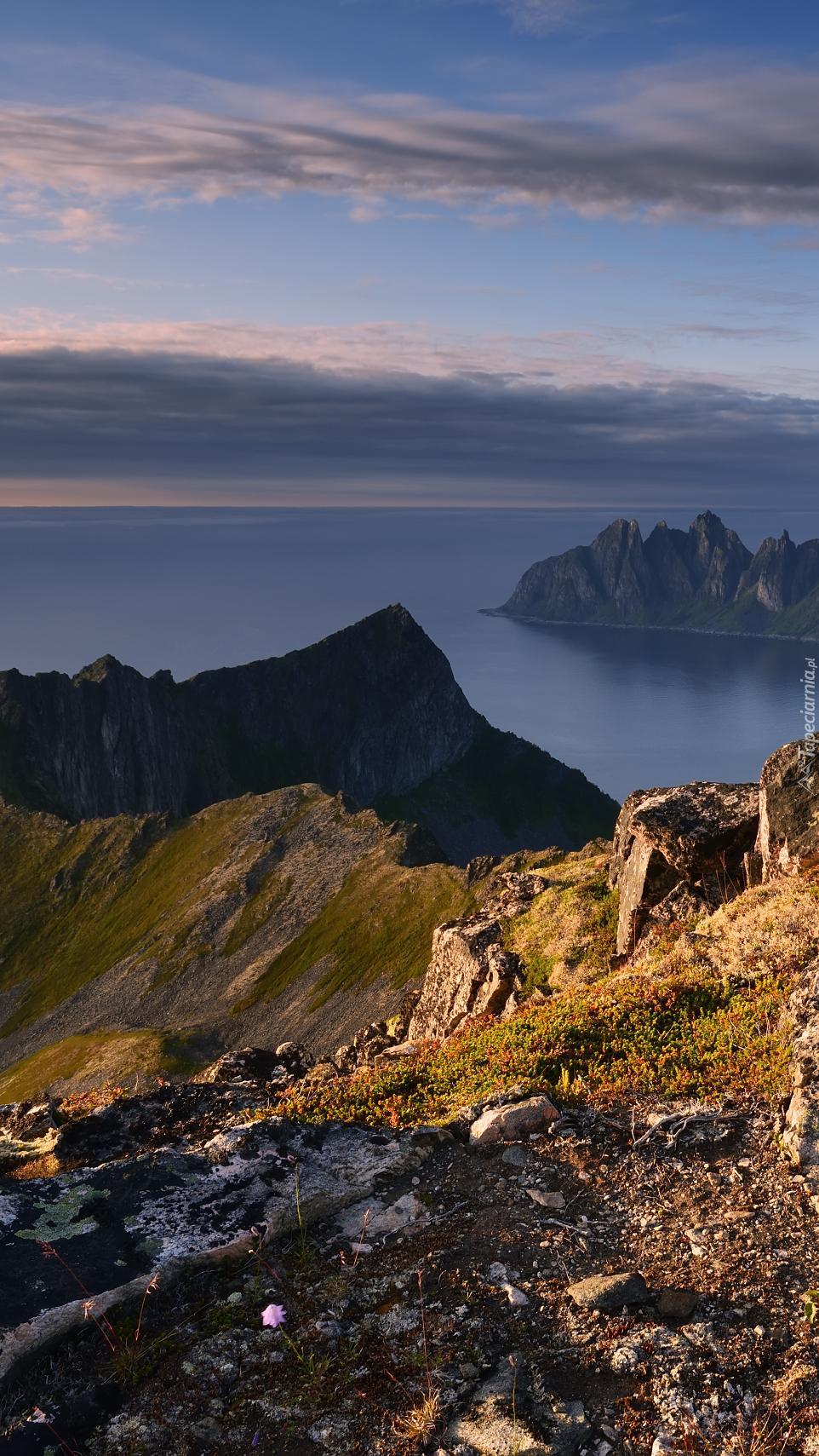 Skały na wybrzeżu wyspy Senja w Norwegii