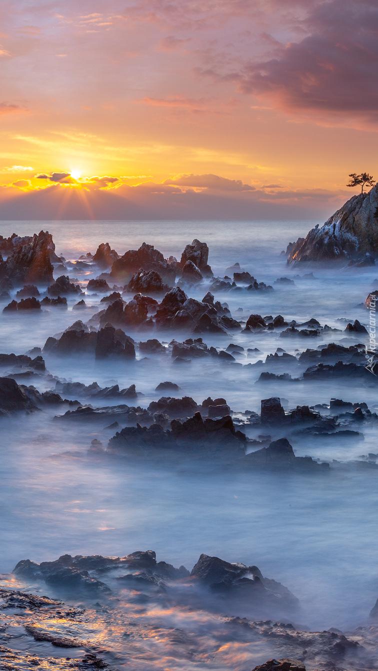 Skały nad brzegiem morza