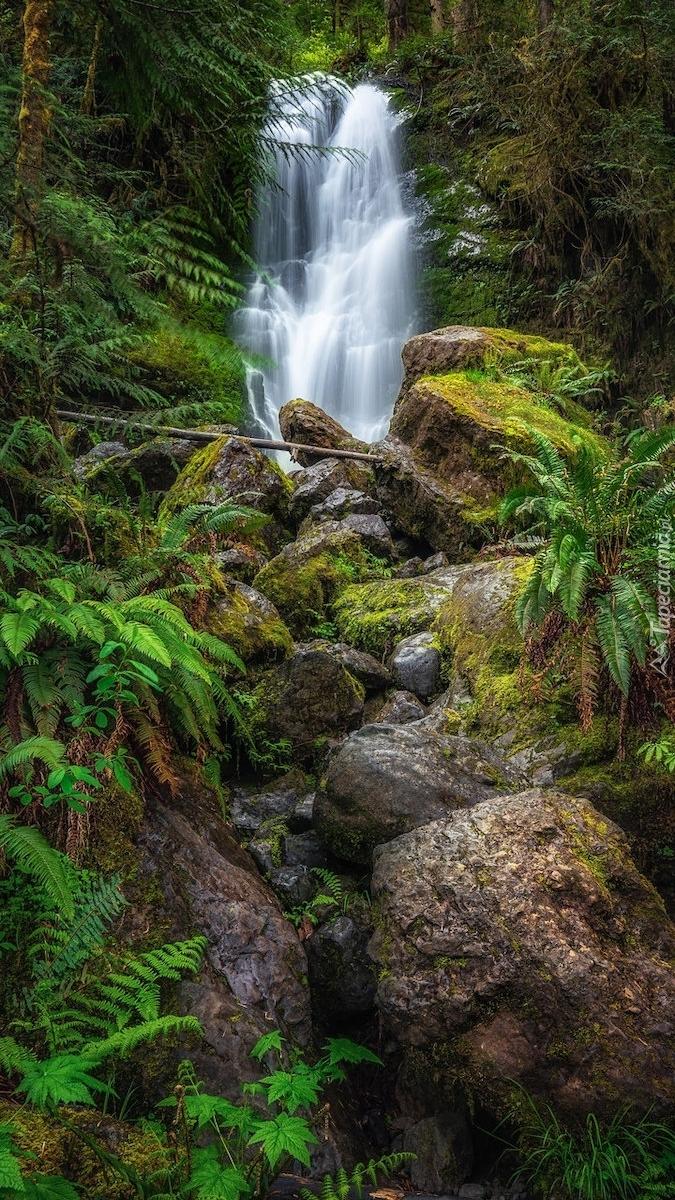 Skały przy wodospadzie Merriman Falls