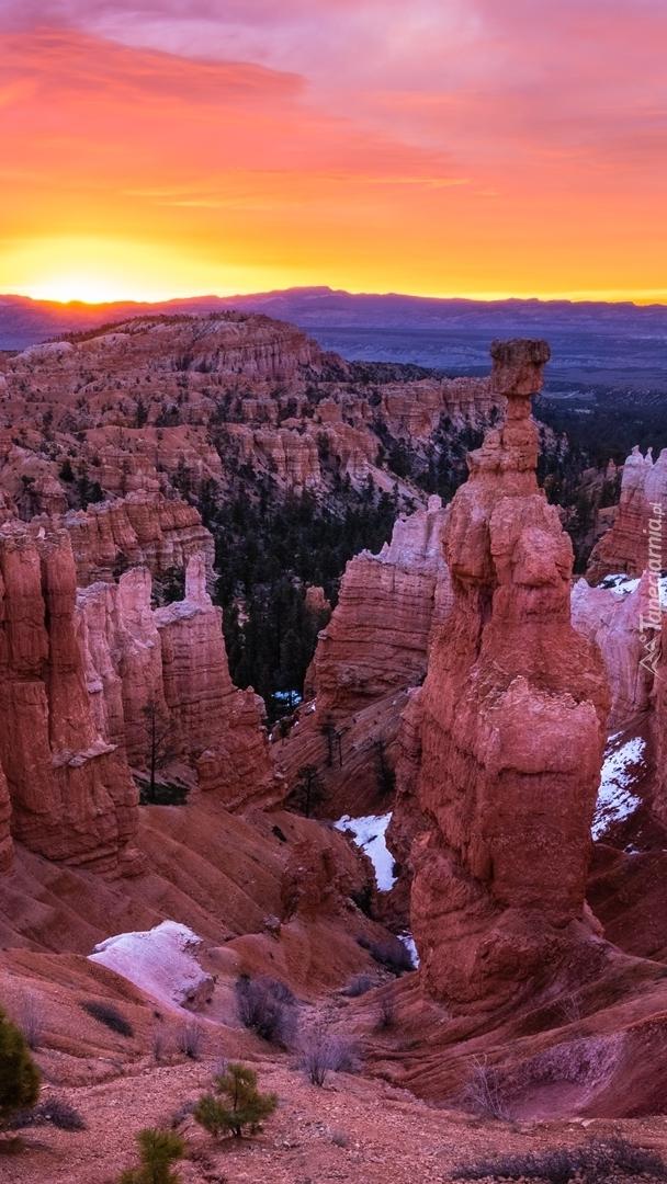 Skały w Parku Narodowym Bryce Canyon
