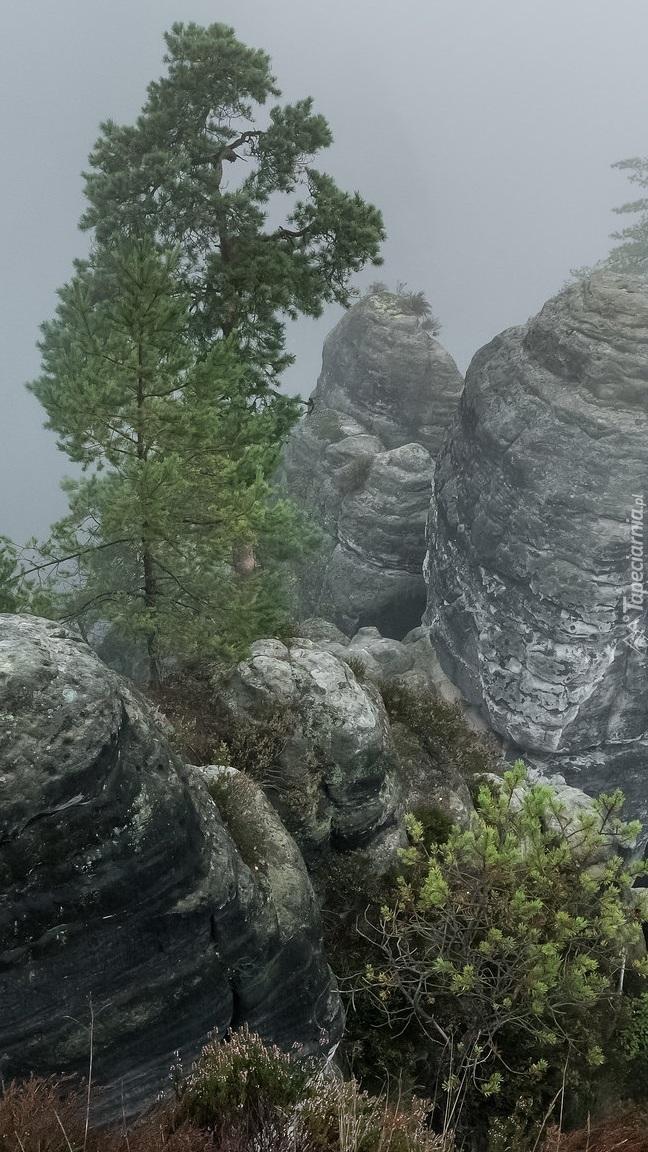 Skały w Parku Narodowym Saskiej Szwajcarii