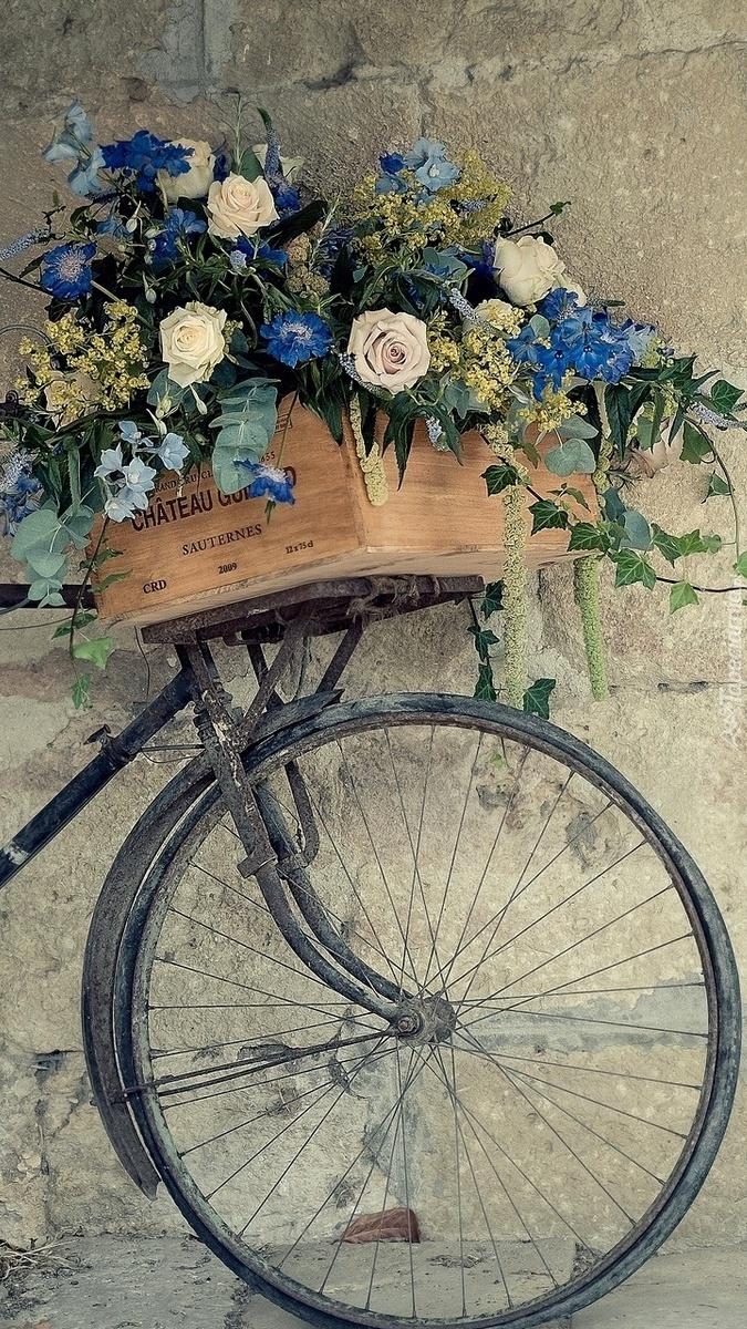 Skrzynka kwiatów na rowerze pod murem