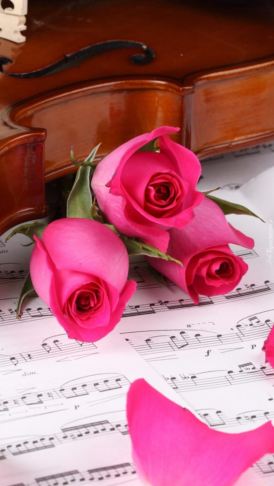 Skrzypce i róże na nutach