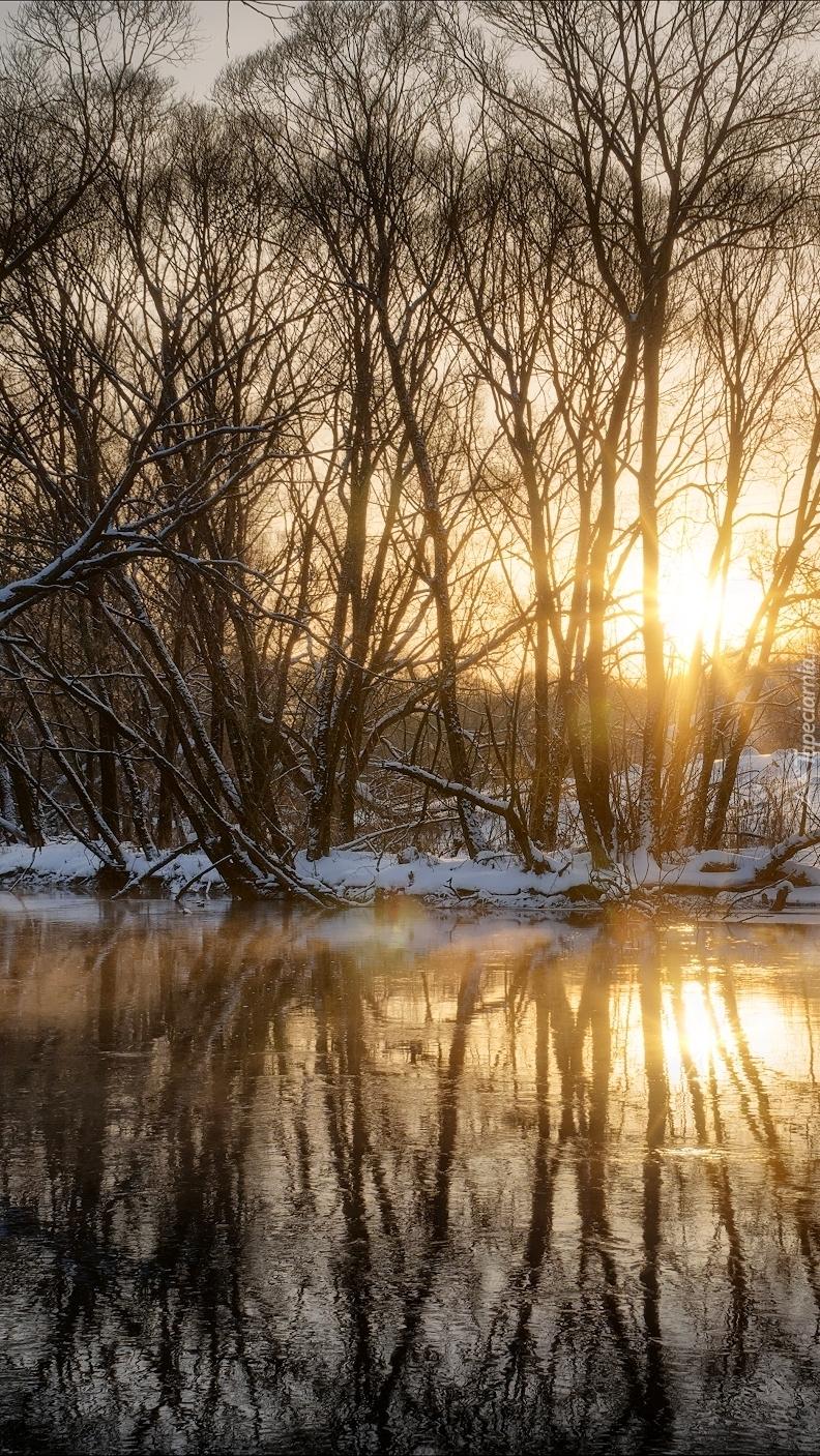 Słońce odbijające się w rzece
