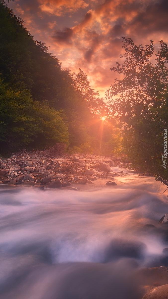 Słońce zachodzące wśród drzew nad rzeką