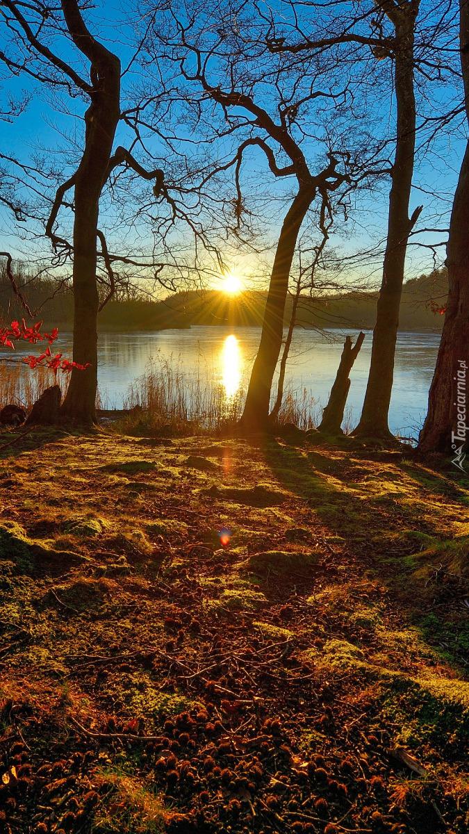 Słoneczny poranek nad jeziorem