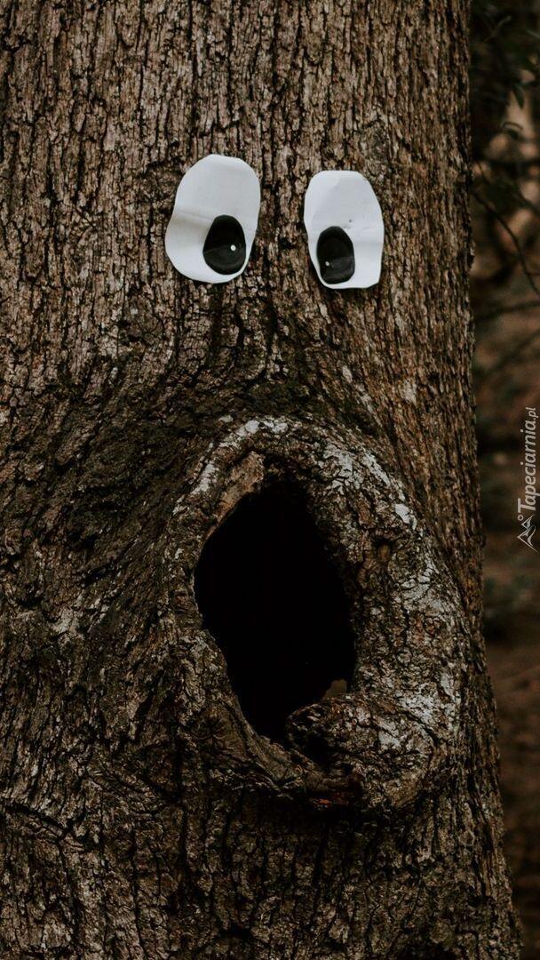 Śmieszne drzewo z oczami