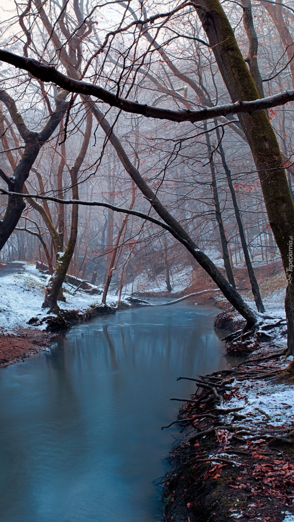 Śnieg na brzegach rzeki