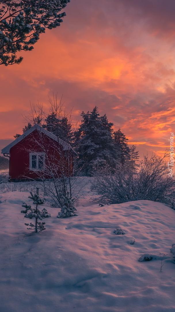 Śnieg wokół czerwonego domku