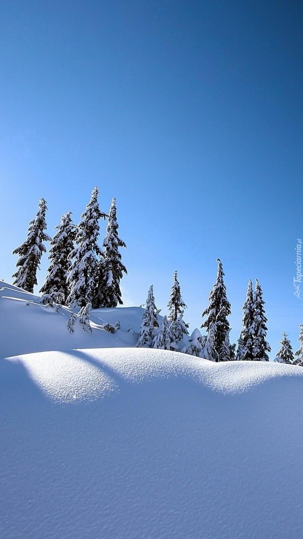 Śniegu nasypało wszędzie jest tak biało