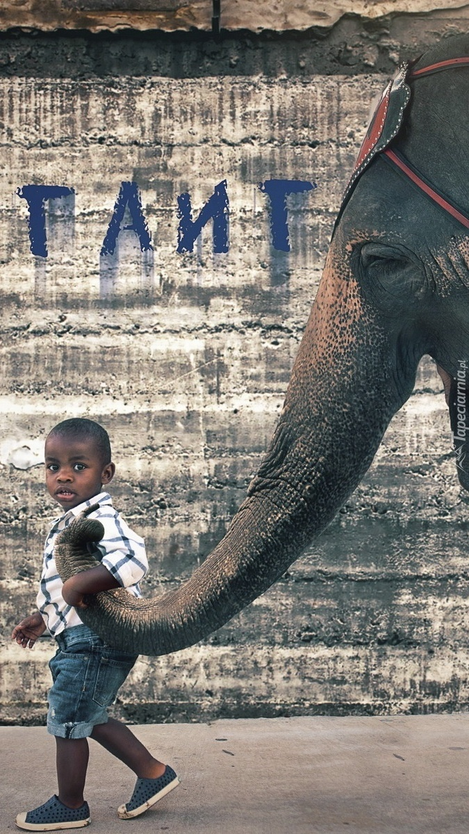 Spacer ze słoniem