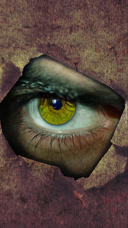 Spojrzenie jednym okiem