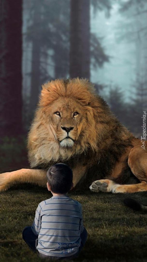 Spotkanie chłopca z lwem
