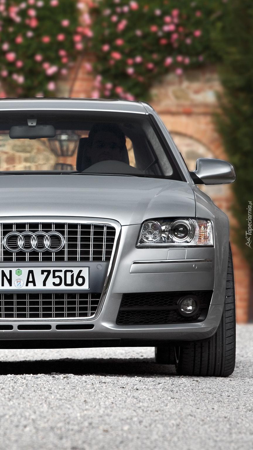 Srebrne Audi