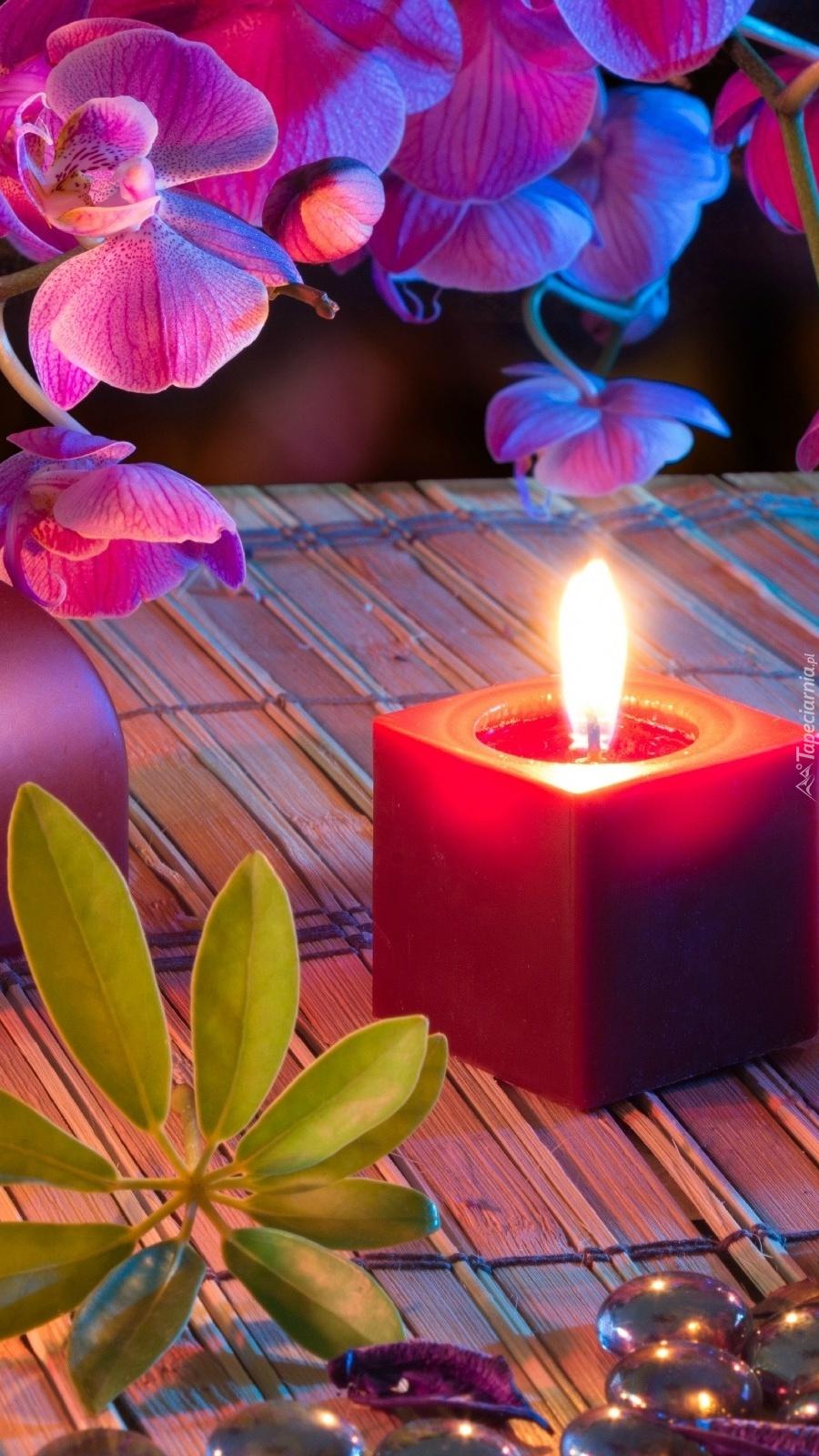 Storczyki i płonąca świeca