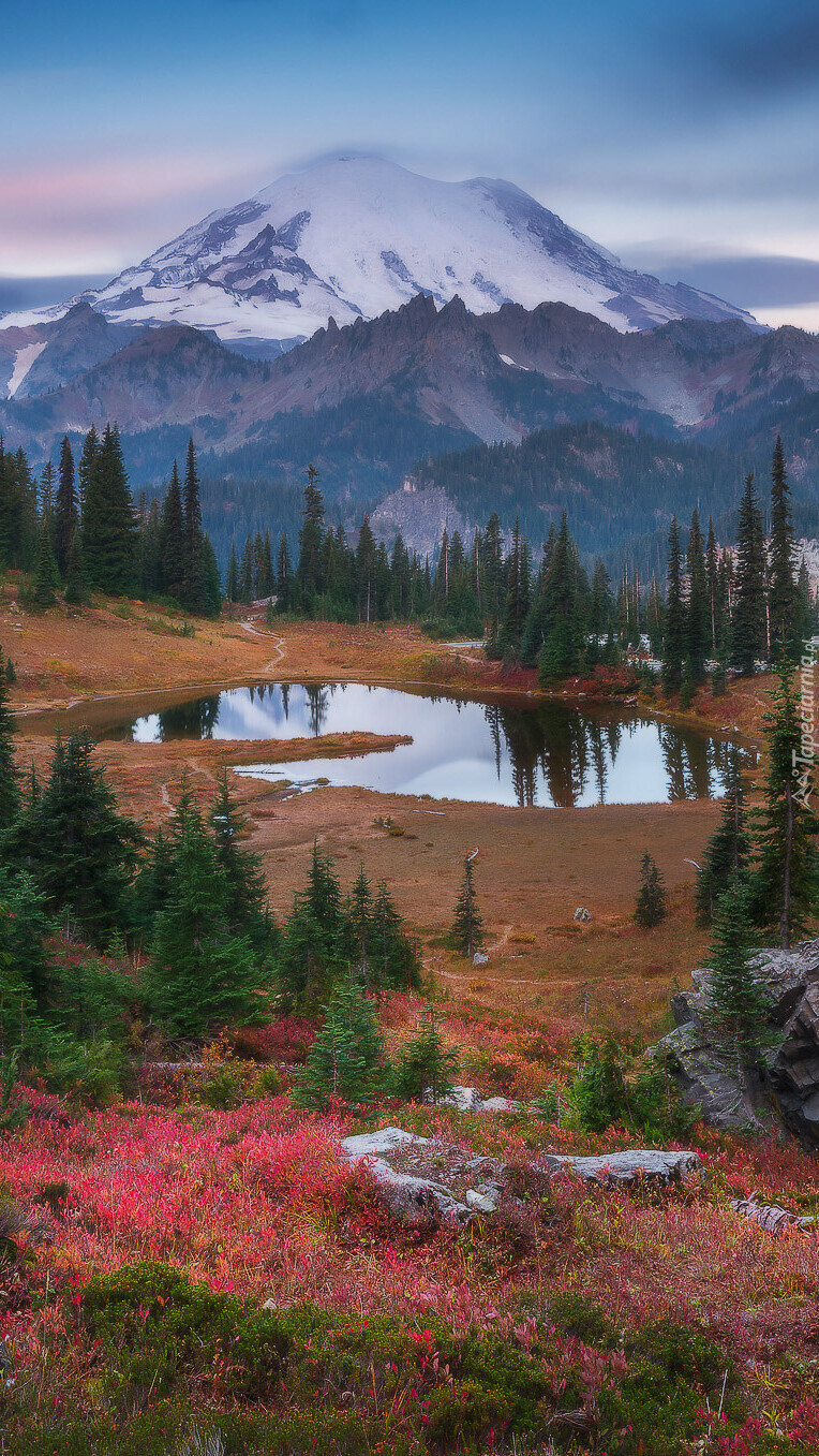 Stratowulkan Mount Rainier i jezioro Tipsoo