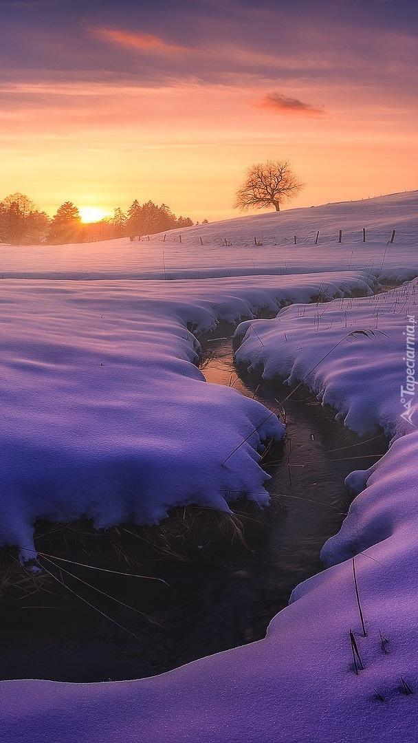 Strumyk w Bawarii zimą