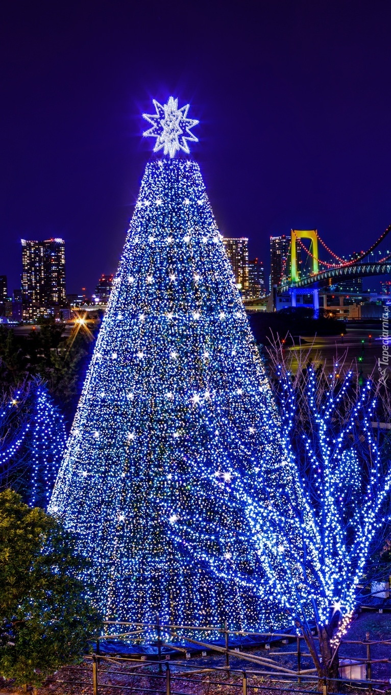 Świąteczna choinka na ulicy Tokio