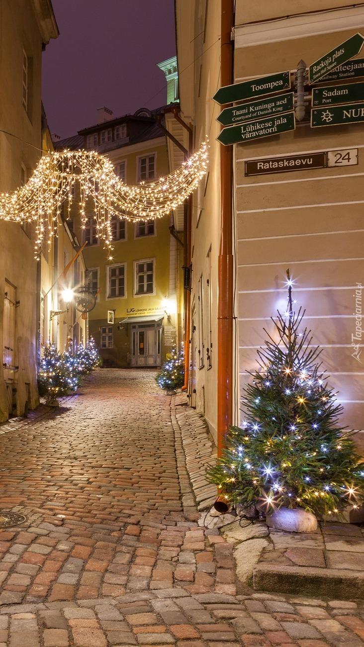 Świąteczna dekoracja ulicy w Tallinie