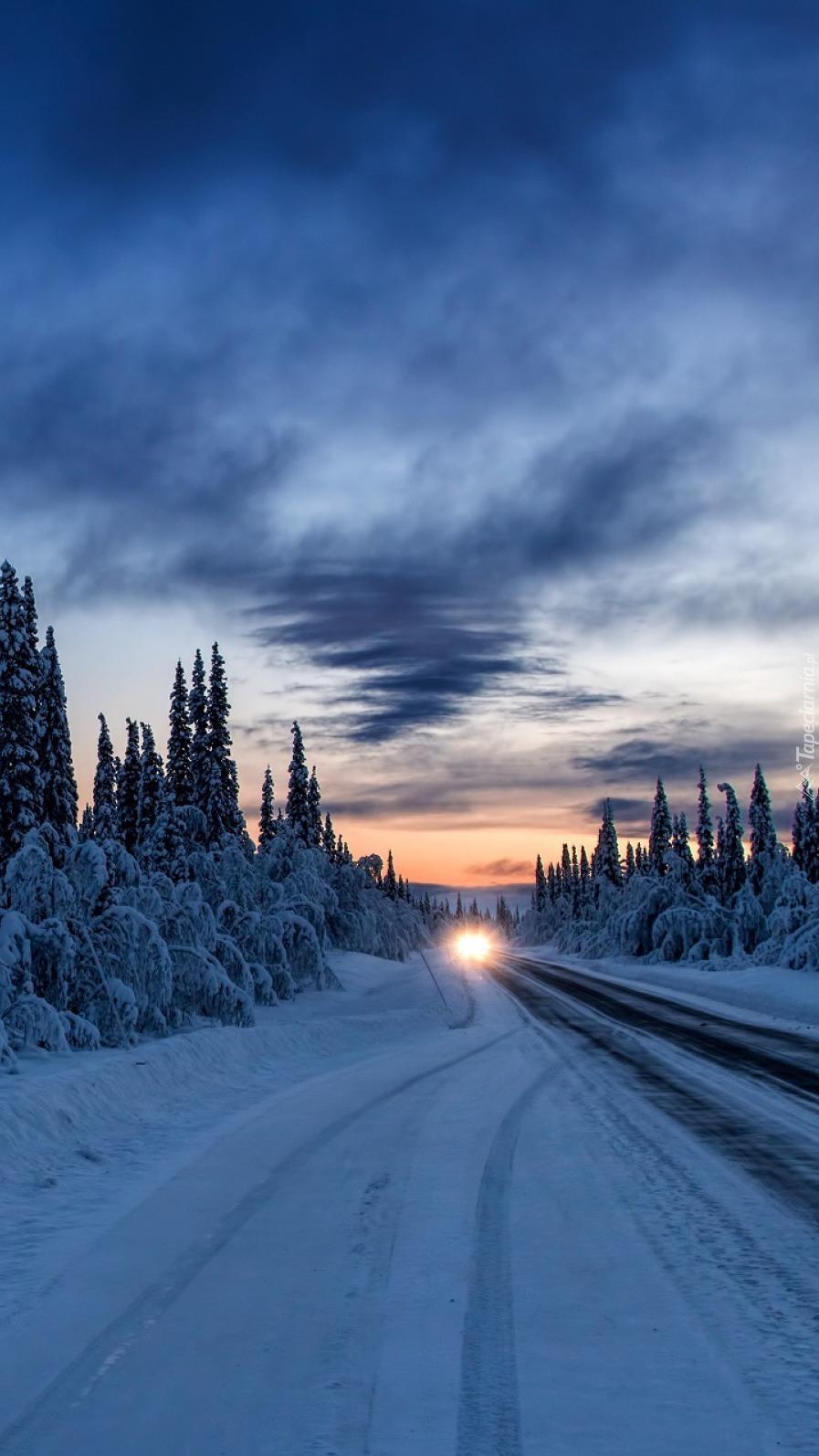 Światła samochodu na drodze w zimowym lesie