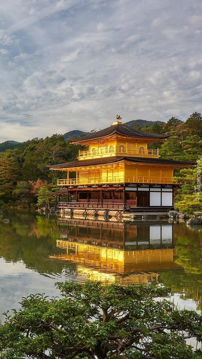Świątynia Kinkakuj w Japonii