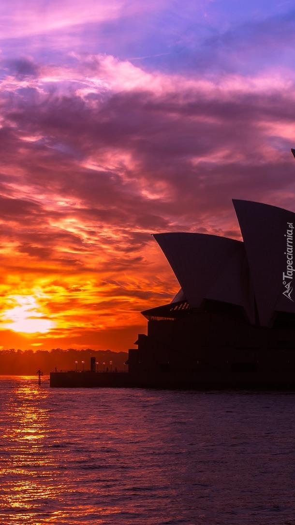 Sydney Opera House o wschodzie słońca