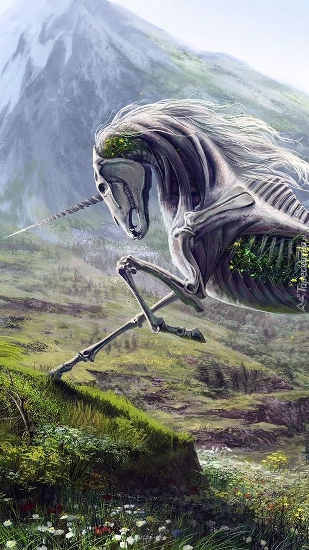 Szkielet jednorożca