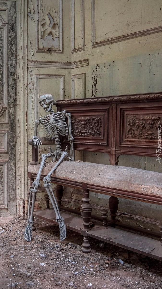 Szkielet na ławce