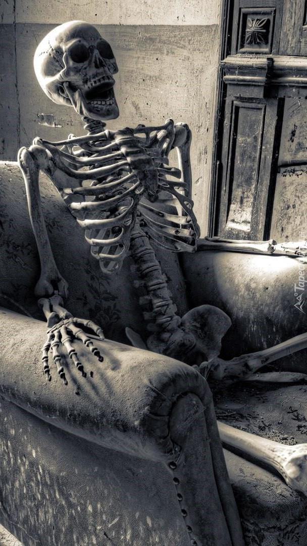 Szkielet w fotelu