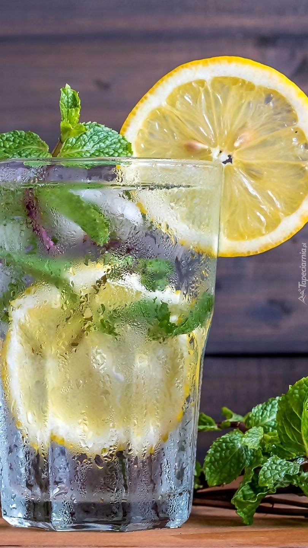 szklanka wody z cytryny-kalorie - Forum Mangosteen