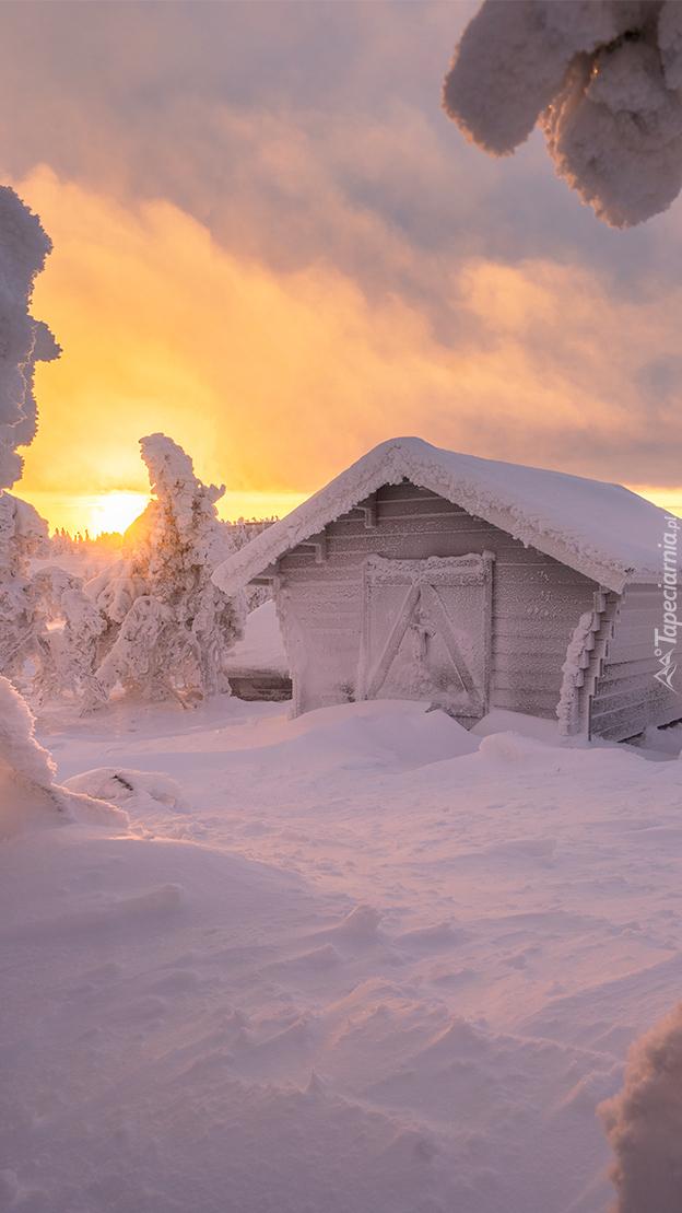 Szopa zasypana śniegiem