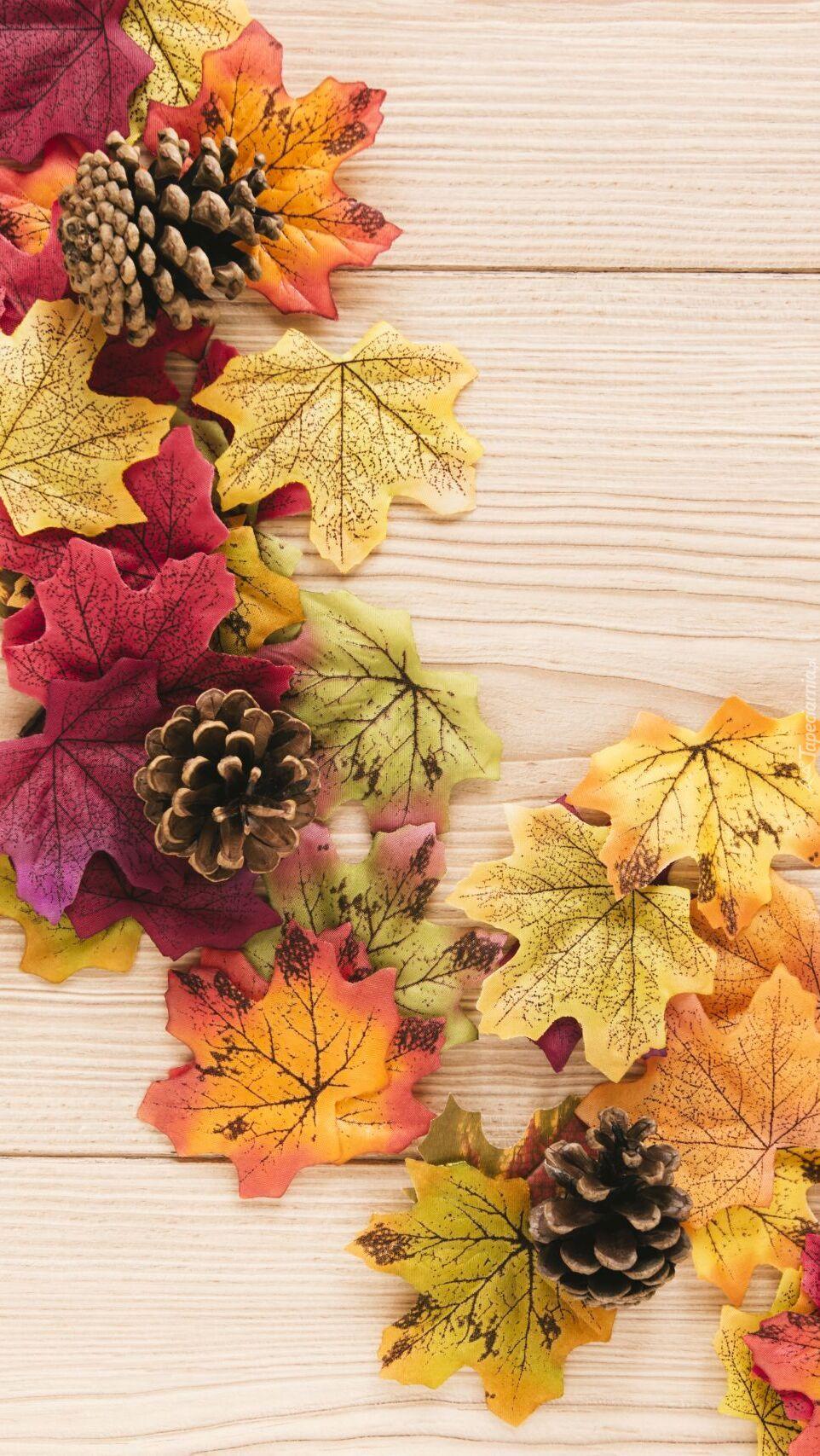 Szyszki na jesiennych liściach
