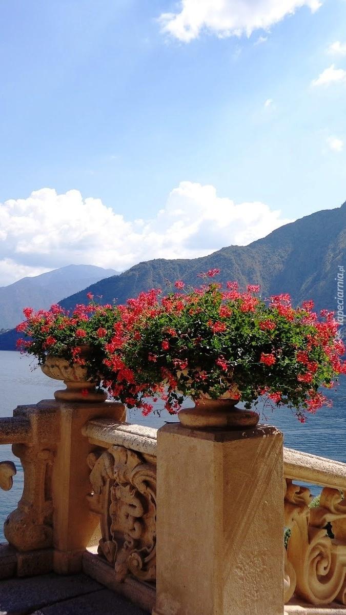 Taras z kwiatami nad górskim jeziorem