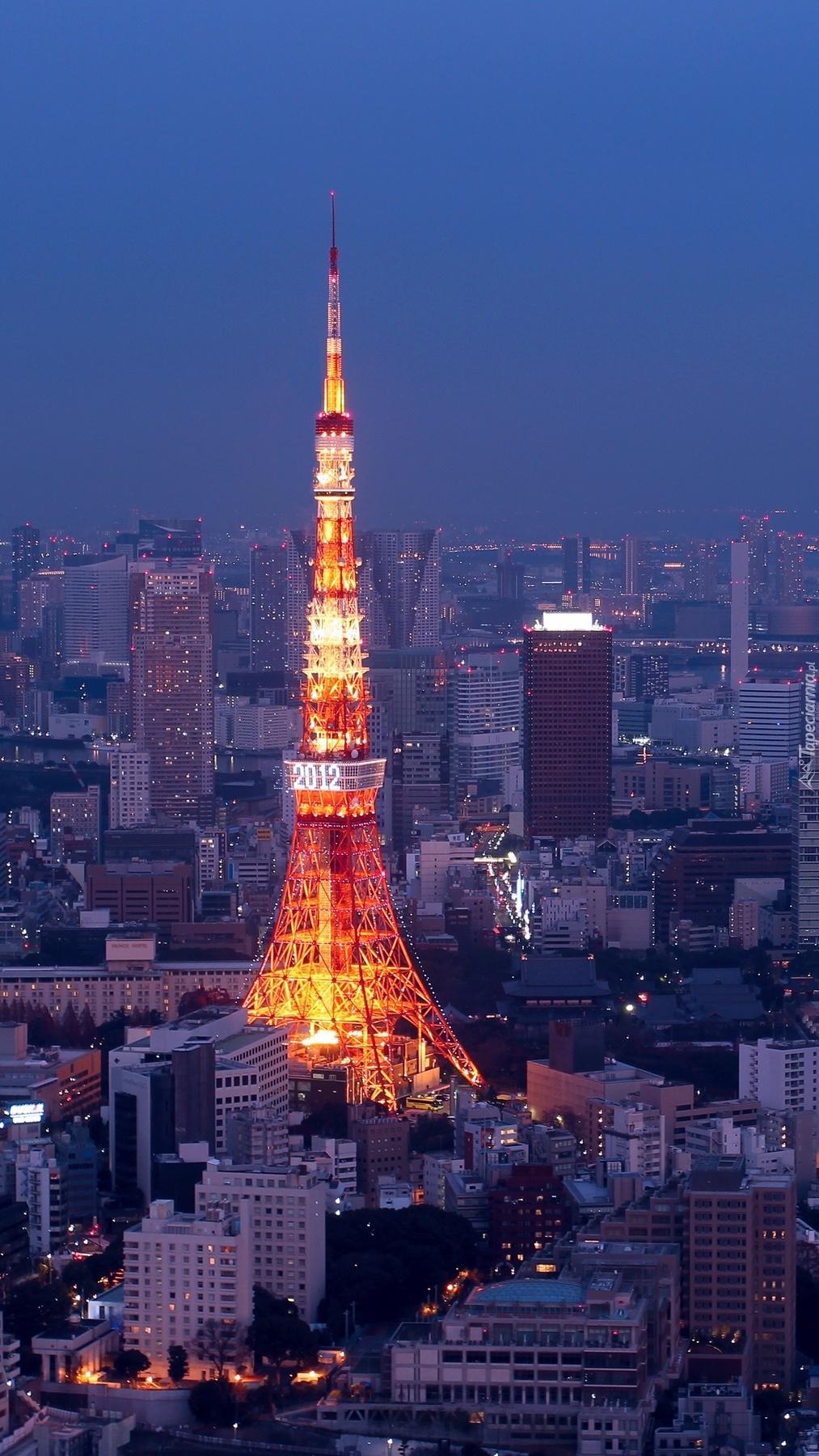 Tokio nocą
